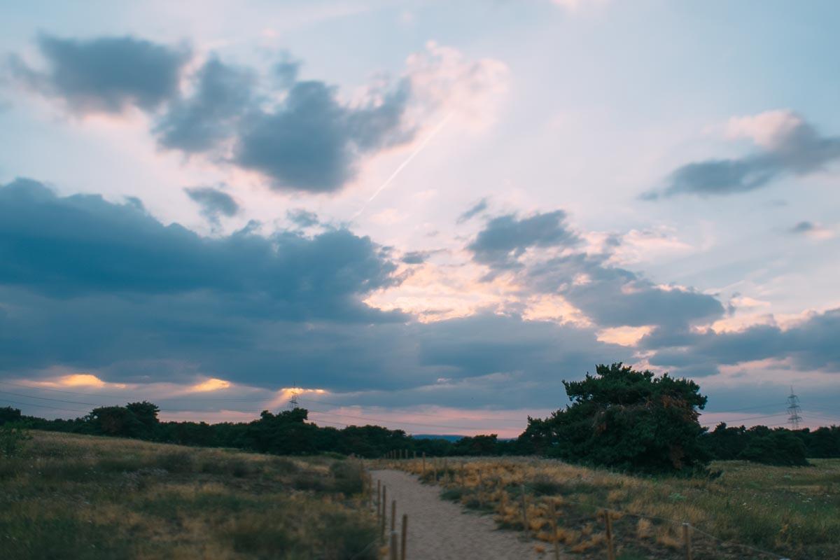 Mainz - Großer Sand. Naturschutzgebiet