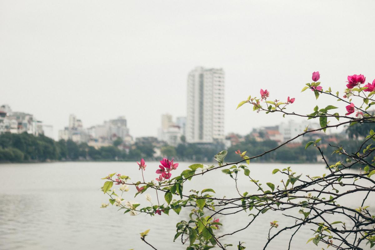 Vietnam Hanoi Tran Quoc Pagode