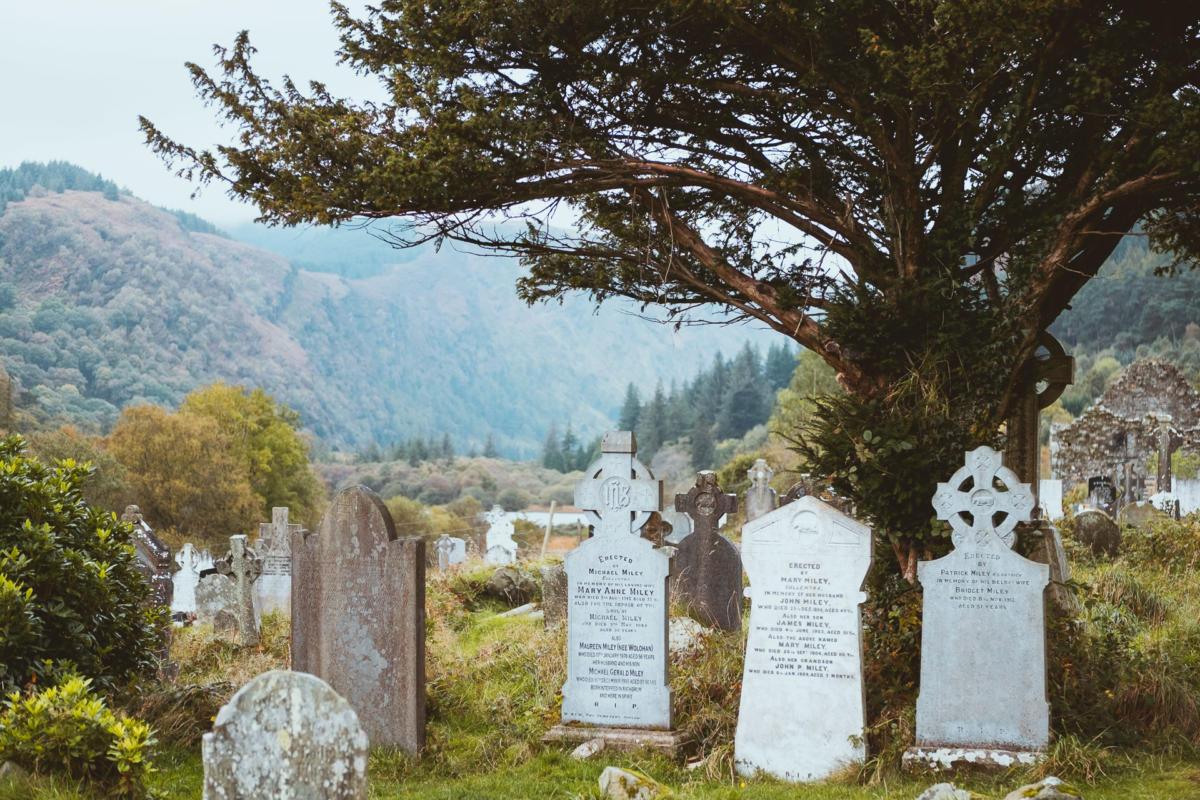 Friedhof mit altem Baum in Glendalough