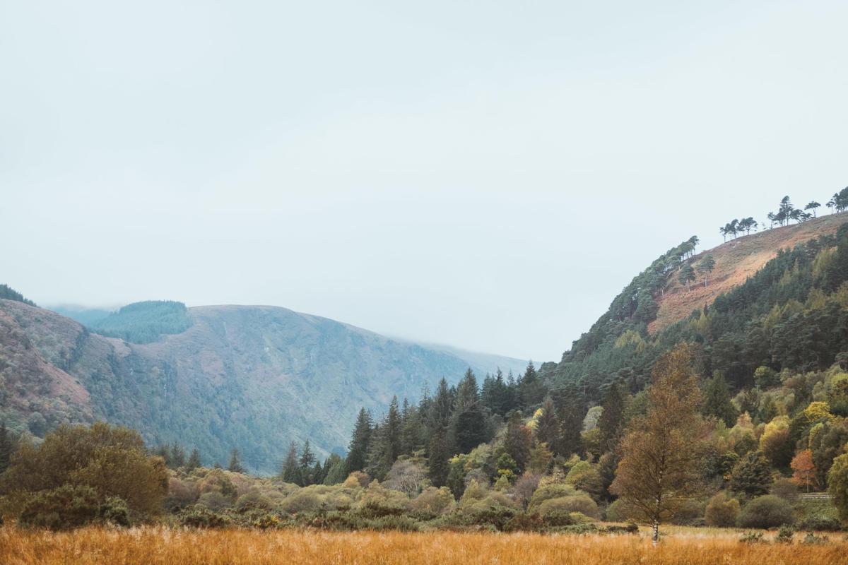 Glendalough Tal